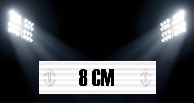 8cm.jpg